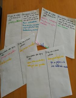 Soluciones dadas por los niños/as del curso 3º A